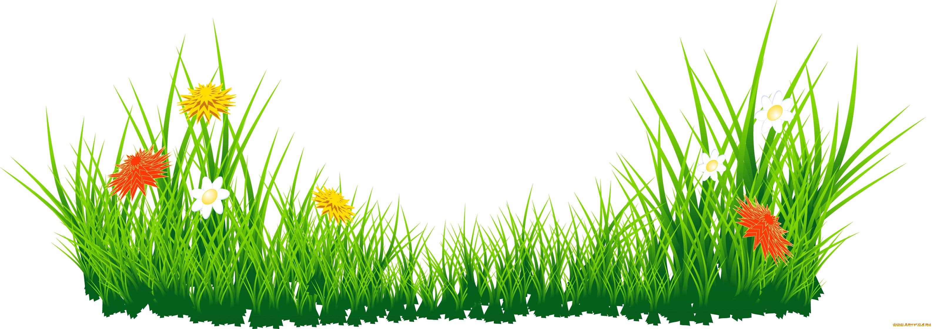 избежать травы на прозрачном фоне картинка центра краям, вытолкните